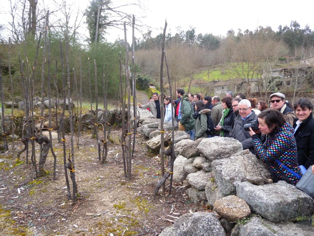 Paseo por las aldeas del Ribeiro